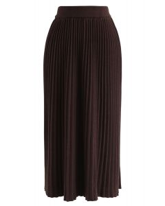 Graceful Bearing Pleated Knit Midi Skirt in Brown
